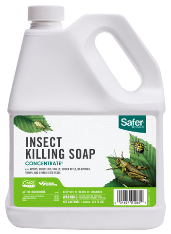 Safer Insect Killing Soap II Conc. Gallon