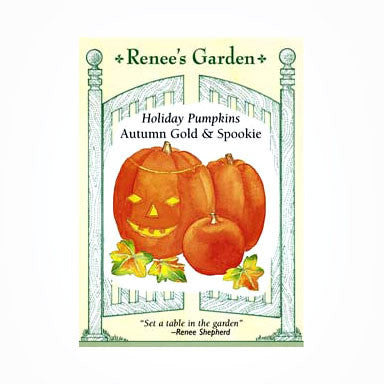 "Pumpkins, ""Holiday Mix"""