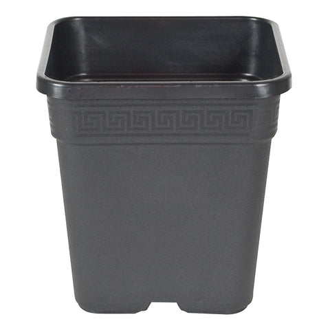 Square Pot Black, 12""
