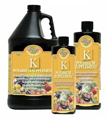 Potassium Supplement 16oz