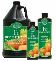 Iron Supplement 2.5 Gal