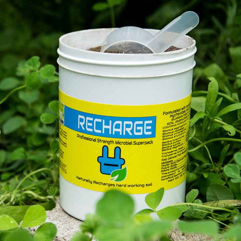 Recharge Microbial Superpack, 16oz