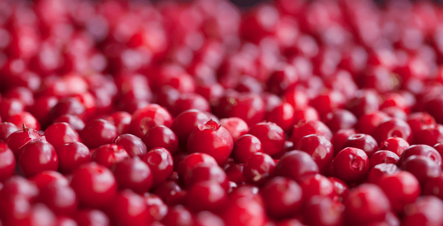 A pile of cranberries