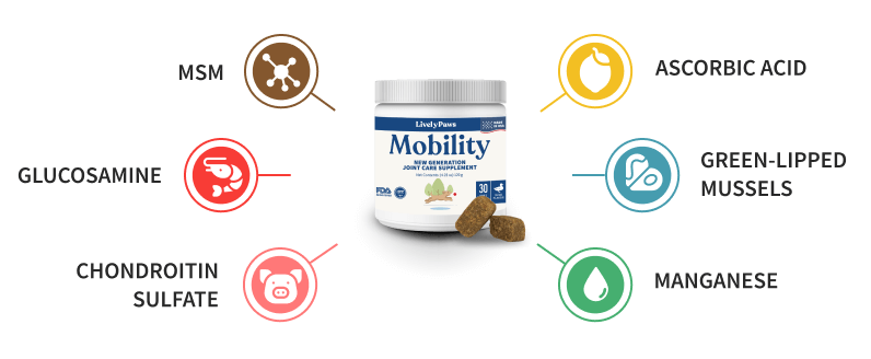 mobility chews benefits