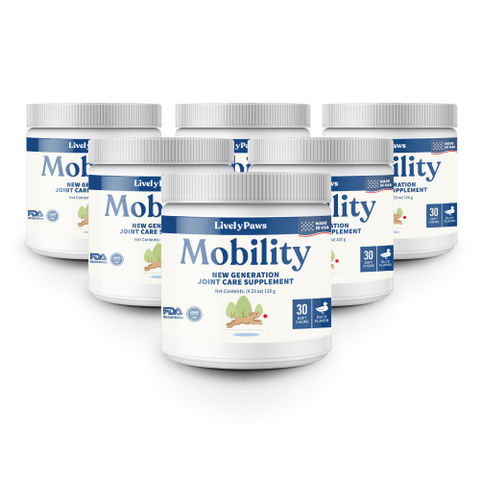 mobility 6 pack