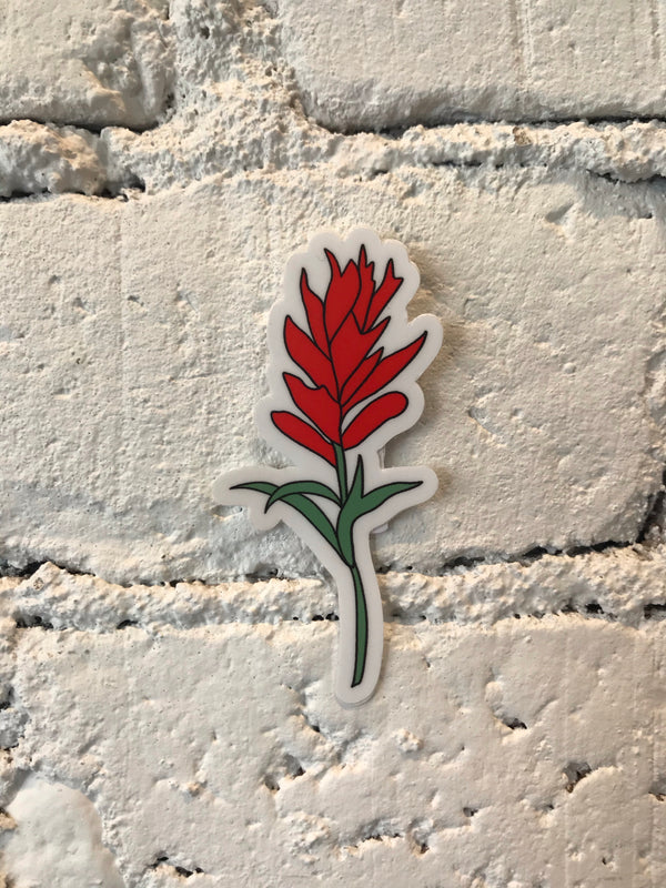 Indian Paintbrush Flower Sticker