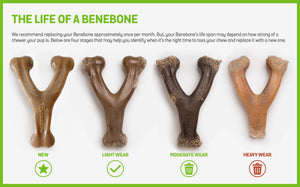 Benebone Wishbone - Bakersfield Pet Food Delivery