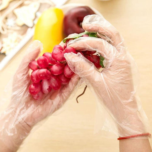 100pcs Disposable Gloves - Going Off Grid