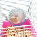 Exercise Running Wheel For Small Pets