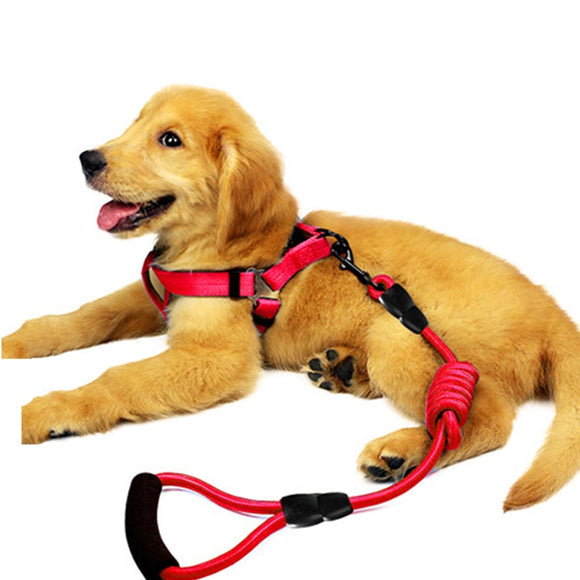 Nylon Dog Leash With Training Harness