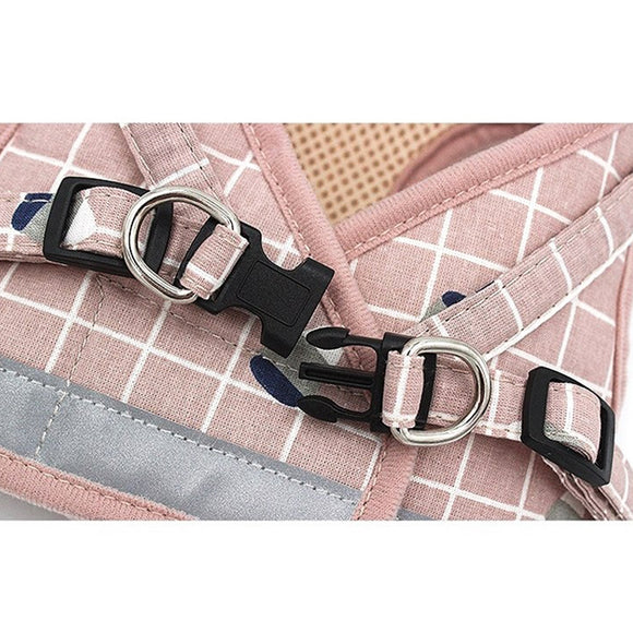 Matching Harness And Leash For Small Dogs