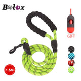 Reflective Strong Dog Leash Padded Handle