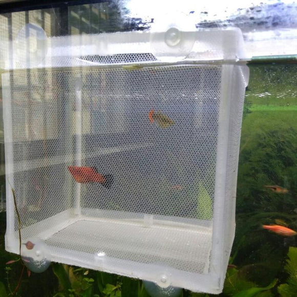 Fish Breeding Incubator Hatchery Isolation Box