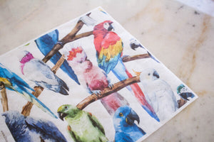 Birds Rice Paper - Belles & Whistles by Dixie Belle