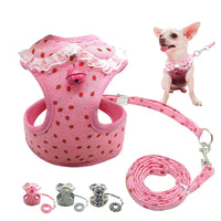 Stylish Chihuahua Harness With a Bell