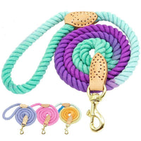 Chihuahua Colorful Rope Leash - Chihuahua Empire