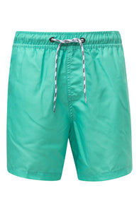 Snapper Rock Hybrid Boardshorts Mint