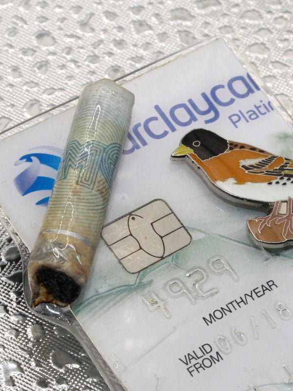 Debit Card Bud Brooch