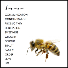 BEE SYMBOLISM. BEE MEANING.