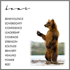 Bear Symbolism. Bear Meaning.