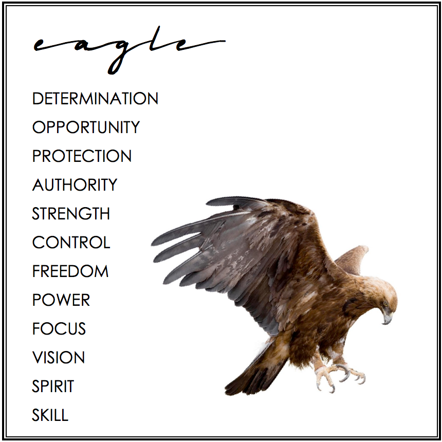 What Does An Eagle Symbolize The Best Eagle 2018