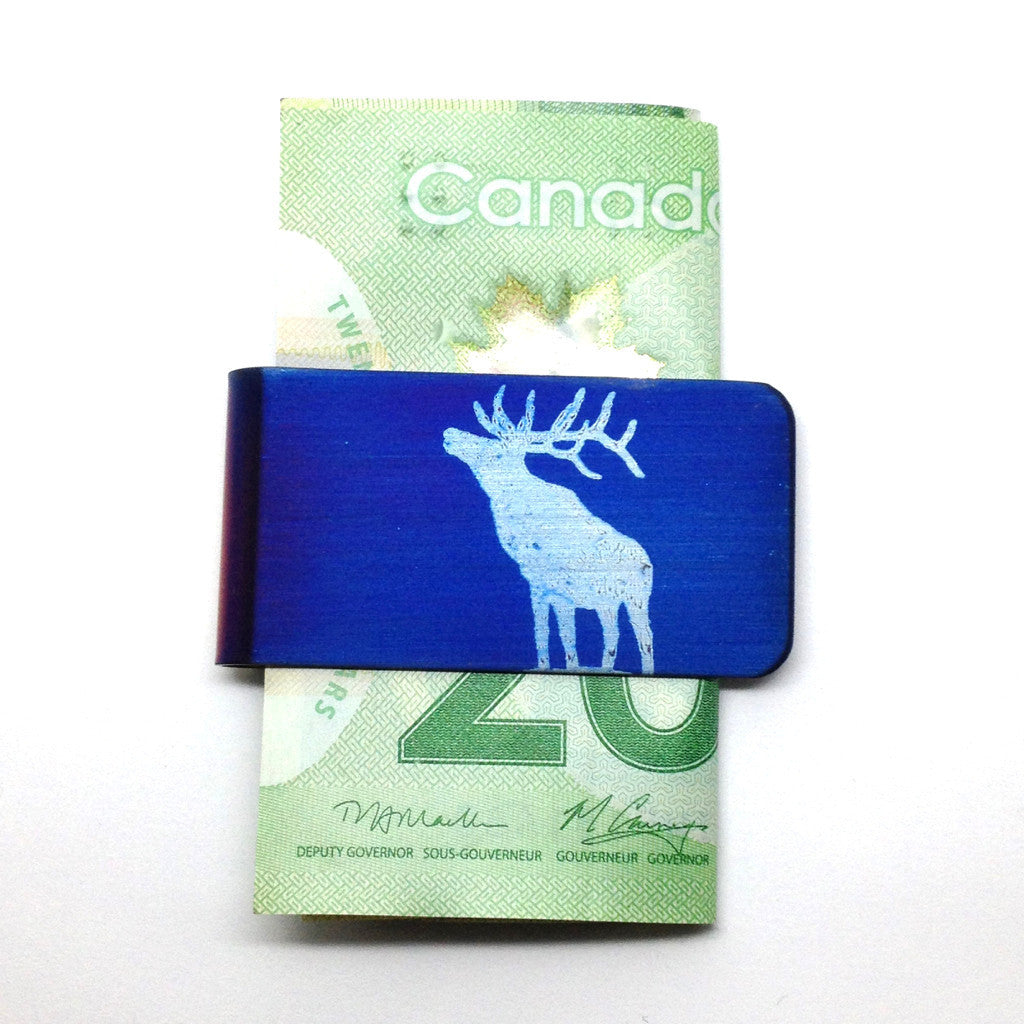 Blue money clip elk