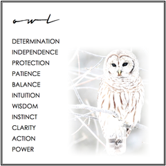 OWL SYMBOLISM.  OWL MEANING.