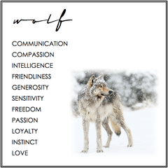 WOLF SYMBOLISM. WOLF MEANING.