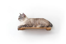 "Load image into Gallery viewer, Catastrophic Creations 18"" Cat Shelf"