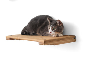 "Catastrophic Creations 18"" Cat Shelf"