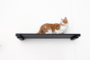 "Catastrophic Creations 34"" Cat Shelf"