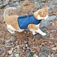 Load image into Gallery viewer, Kitty Holster Cat Harness