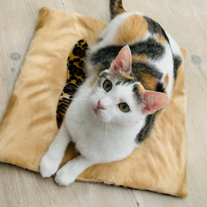 Cat Buddies Thermal Cat Mat