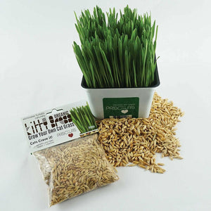 Priscilla's Grass Seed Pack 3oz