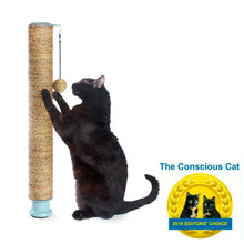 Load image into Gallery viewer, Hauspanther Cat Scratch Pole Deluxe (Seagrass)