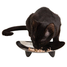 Load image into Gallery viewer, Eclipse Stainless Steel Cat Bowl