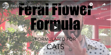 Load image into Gallery viewer, Feral Flower Formula