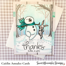 Load image into Gallery viewer, Clear Stamps - Frosty Feet