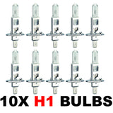 H1 448 55w OEM Replacement Bulbs (10 PACK)