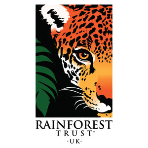The Rainforest Race - Marathon (42km)