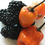 Load image into Gallery viewer, Blackberry Habanero