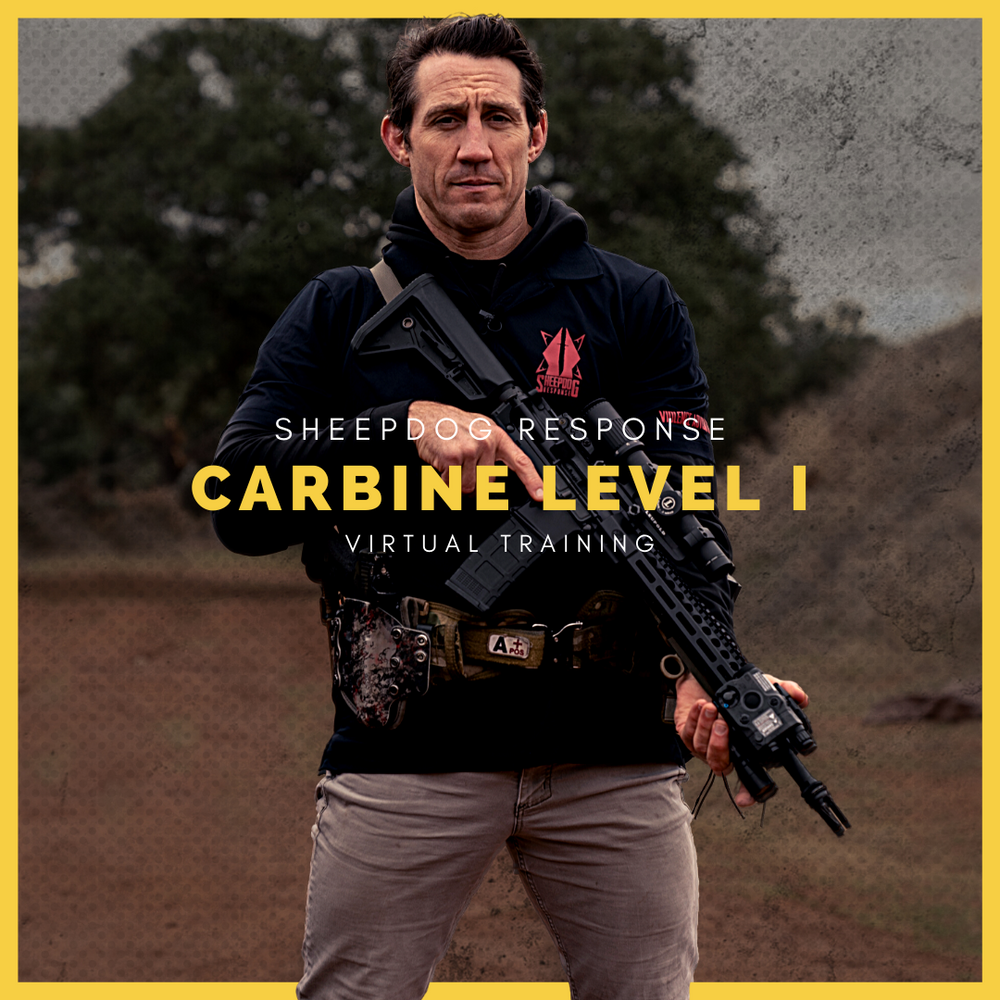 Carbine Level 1 Virtual Training