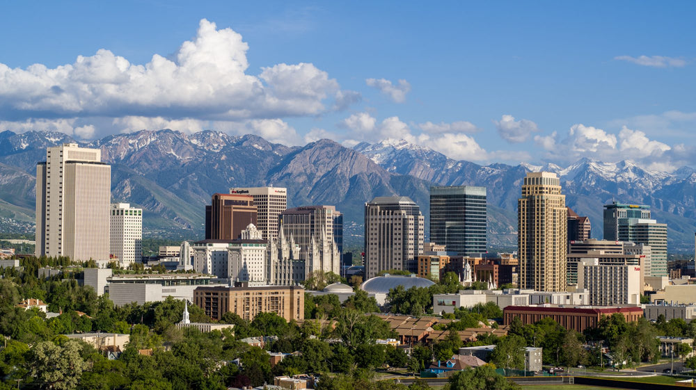 Salt Lake City, UT - Sheepdog Level 1 (May 28-30, 2021)