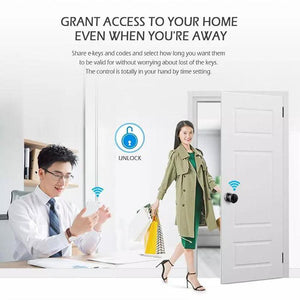 WiFi Fingerprint Password Smart Door Lock