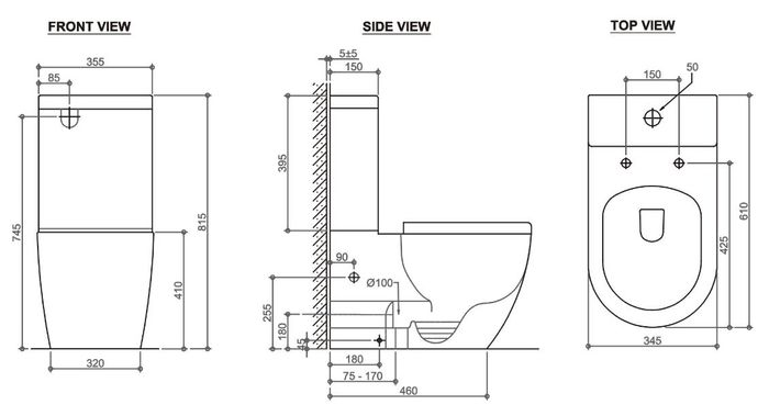 Deluso Rimless Back To Wall Toilet