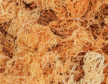 Load image into Gallery viewer, Gold Irish Sea Moss (St. Lucia, Completely Dry)2oz