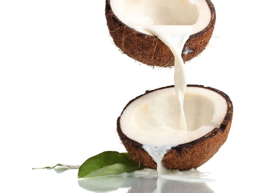 Coconut Milk Powder - Organic Weight Loss Lean Factor