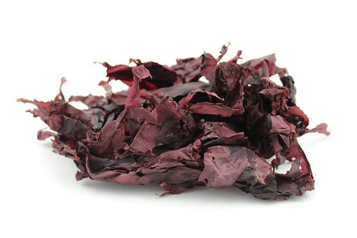 Dulse Leaves Whole (Canada) - Sunrise Botanics