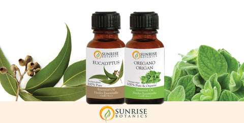 Eucalyptus and Oregano Essential Oil with Aromatherapy Inhaler - Sunrise Botanics
