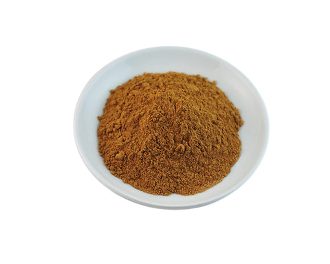 Sunflower Botanical Extract - Sunrise Botanics